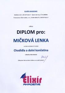 Diplom Chodidla a dolní končetina